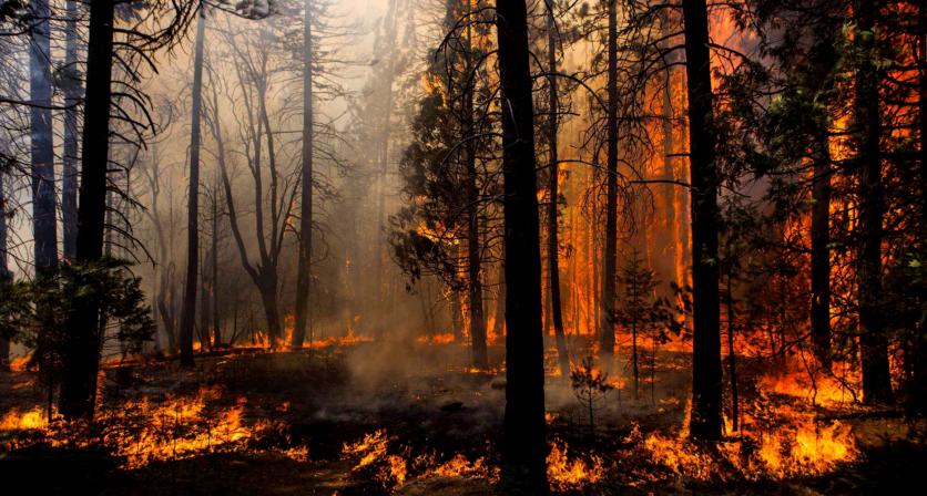 Governo prorroga período crítico de incêndios