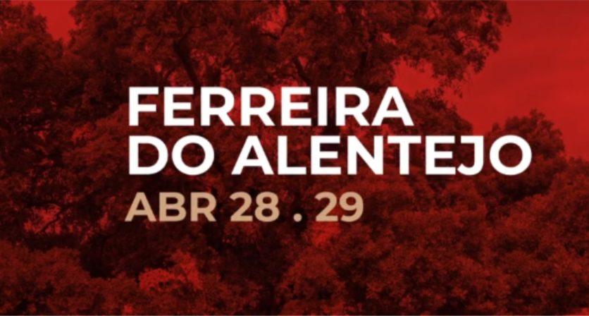Festival Terras sem Sombra 1