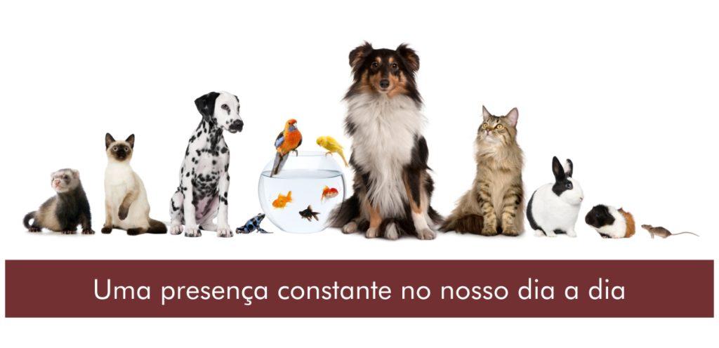 Animais de companhia
