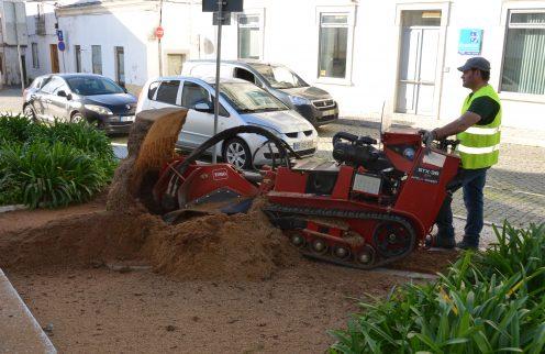Remoção de cepos de árvores existentes em espaços públicos