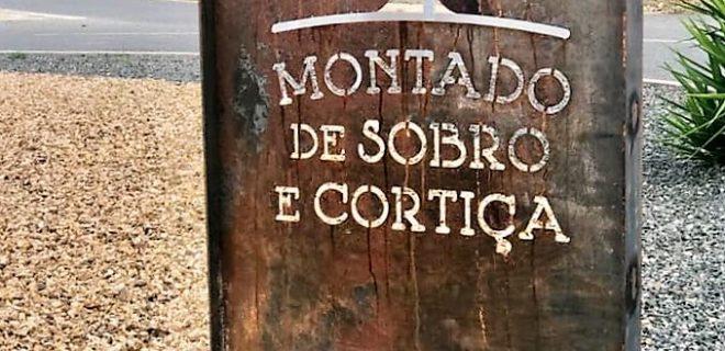 (Português) Ferreira do Alentejo: Território de Montado de Sobro e Cortiça