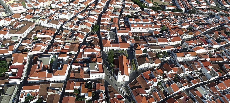 (Português) Estratégia local de habitação